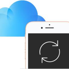 Сведения о хранении информации в приложении iCloud и на самом устройстве